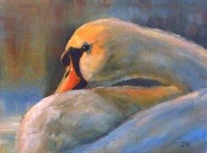 Swan, 12x16, Oils ©June Rollins