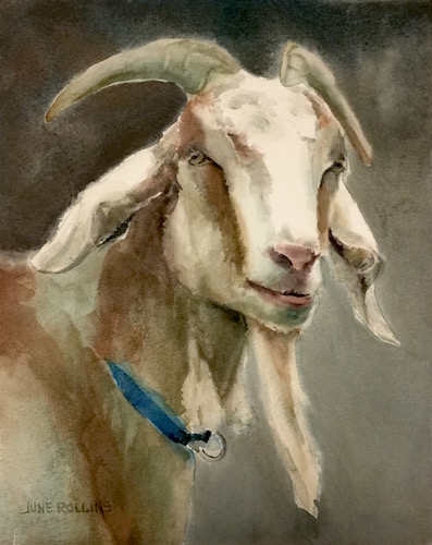 billy-goat-gruff-fb